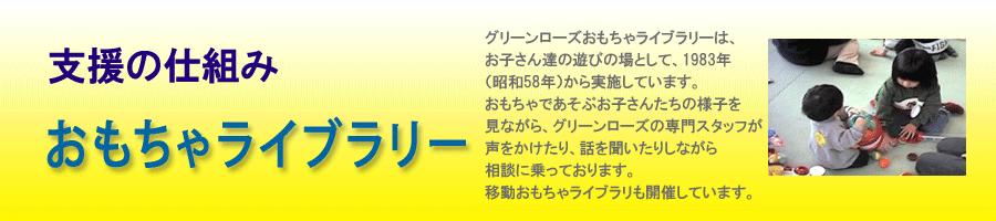 Page_Title2013_sys_ToyLib