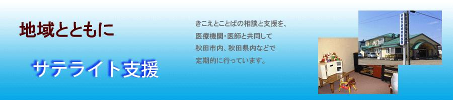 Page_TitlePlate2013_Satelli