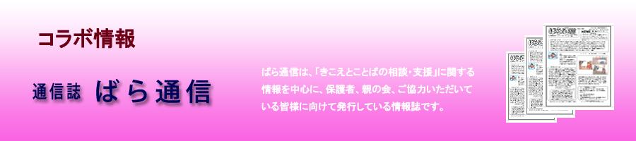 Page_TitlePlate2013_baraCom