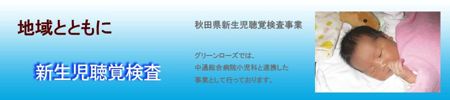 Page_TitlePlate2013_shinsei